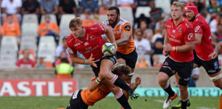 lions vs cheetahs currie cup
